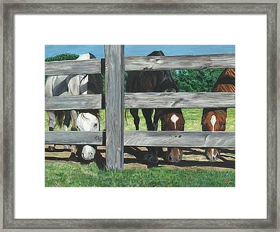 The Grass Is Always Greener... Framed Print by Patty Vicknair