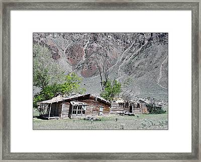 The Grass Is Greener When It's Growing On The Roof Framed Print