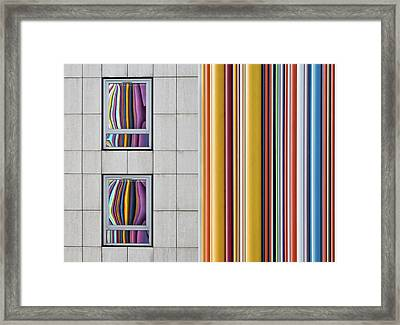 The Gray And The Colors Framed Print