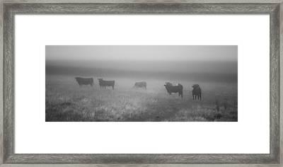 The Graze Framed Print