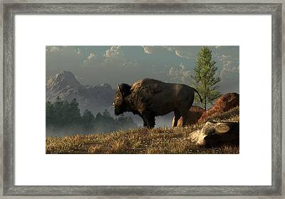 The Great American Bison Framed Print by Daniel Eskridge