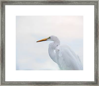 The Great Egret Framed Print by Camille Lopez