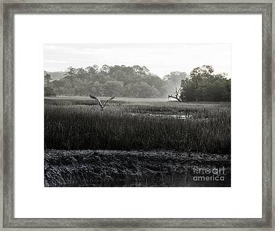 The Great Escape Framed Print by Scott Hansen