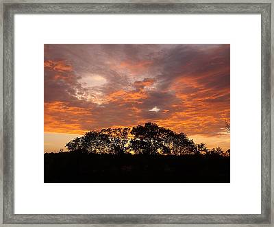 The Great Fire Dragon Framed Print by David Addams