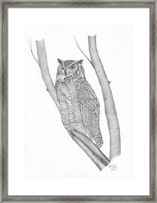 The Great Horned Owl Watches Framed Print