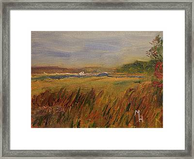 The Great Marsh Framed Print