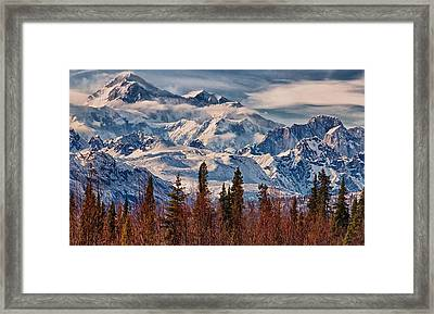 The Great One Framed Print by Michael Rogers