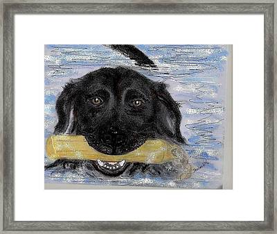 The Great Swim Framed Print