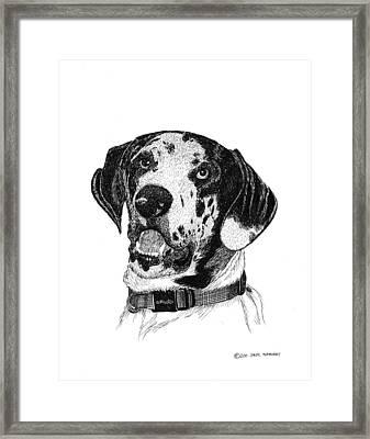 The Greatest Dane Framed Print by Jack Pumphrey
