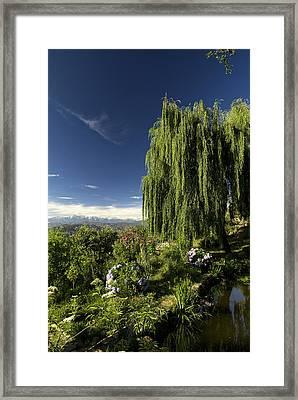 The Green And The Hills Framed Print by Rajiv Chopra