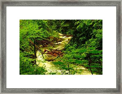 The Green And Water Winding Through My Dreams Framed Print by Jeff Swan