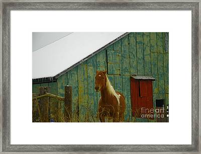 The Green Barn Framed Print