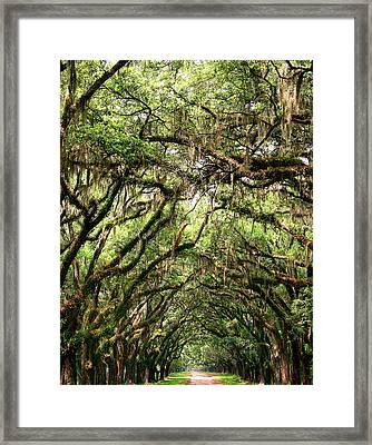 The Green Mile Savannah Ga Framed Print