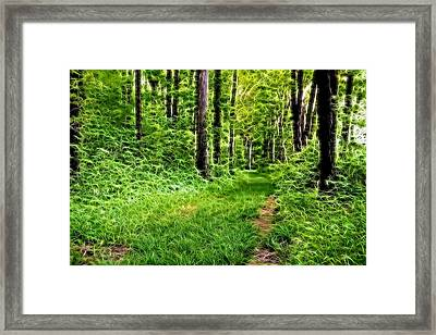 The Green Path Framed Print by Dan Sproul