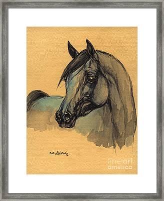 The Grey Arabian Horse 1 Framed Print by Angel  Tarantella