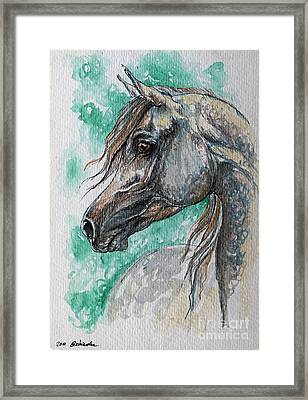 The Grey Arabian Horse 13 Framed Print by Angel  Tarantella