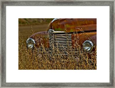 The Grill Framed Print