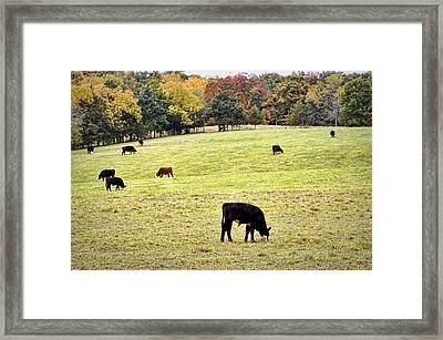The Grounds Crew Framed Print by Cricket Hackmann