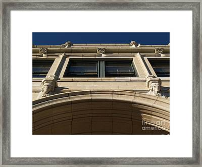 The Grove -- Looking Up Framed Print by Anna Lisa Yoder