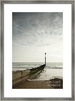 The Groyne Framed Print by Anne Gilbert