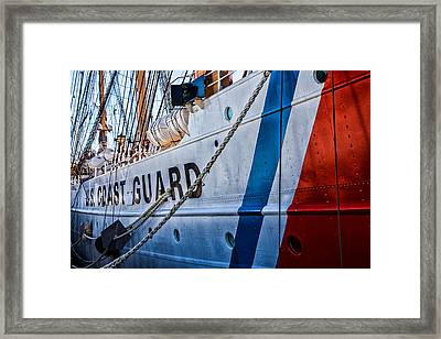 The Guard  Framed Print