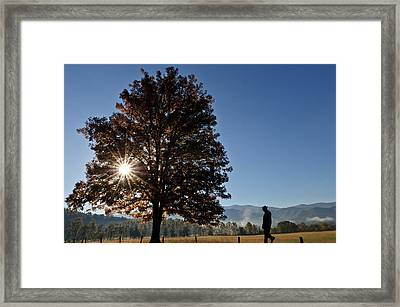 The Guiding Light In Cades Cove Framed Print