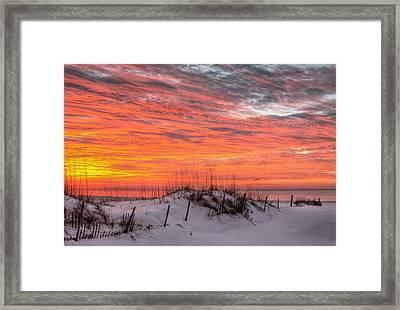 The Gulf Shores Of Alabama Framed Print