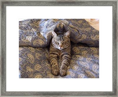 The Guru Will See You Now Framed Print