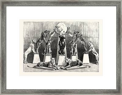 The Happy Family Of Performing Wild Beasts At The Crystal Framed Print
