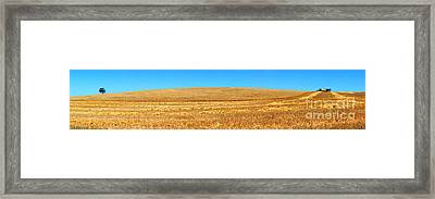 The Harvest Framed Print by Bill  Robinson