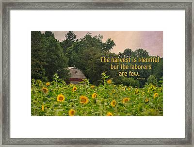 The Harvest Is Plentiful Framed Print by Sandi OReilly