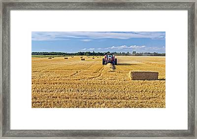 Framed Print featuring the photograph The Harvest by Keith Armstrong