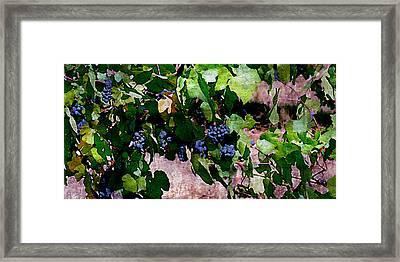 The Harvest Line I Framed Print by Ken Evans