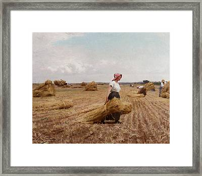 The Harvest Framed Print