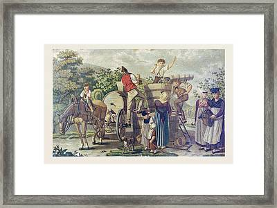The Harvesting Of Wine Grapes, 19th Century Engraving, Time Framed Print by English School