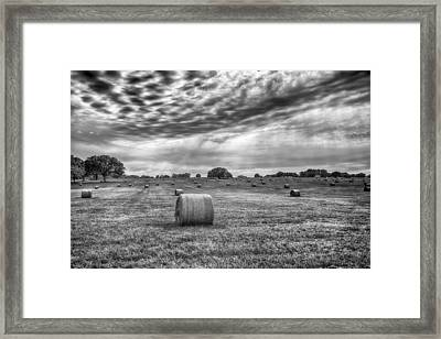 The Hay Bails Framed Print by Howard Salmon