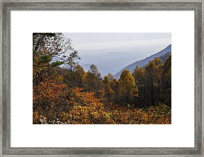 The Heart Of Autumn Framed Print by Lynn Bauer