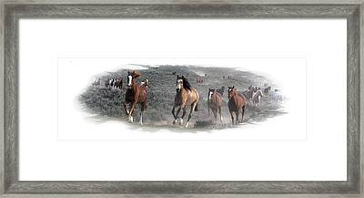 The Herd Is Coming Framed Print