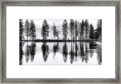 The Heron Pond Framed Print