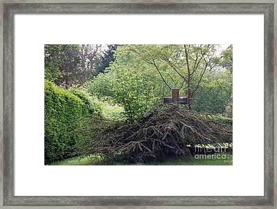 The Hidden Cross Framed Print by Linda Prewer