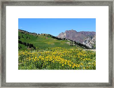 The Hills Are Alive Framed Print by Marty Fancy