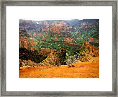 The Hills Have Eyes Framed Print by Larry Spring