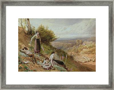 The Hillside Gatherine Foxgloves Framed Print by Myles Birket Foster