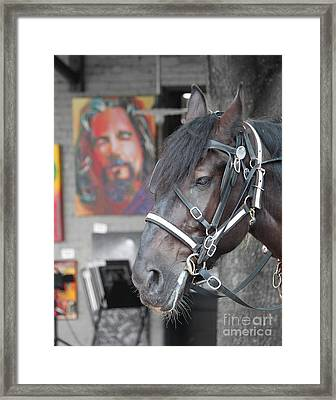 The Horse Abides Framed Print by Robert Yaeger