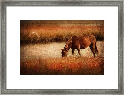 The Horse And The Gull - Vintage Framed Print