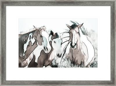 The Horse Club Framed Print