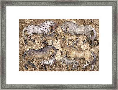 The Horse Collection Framed Print