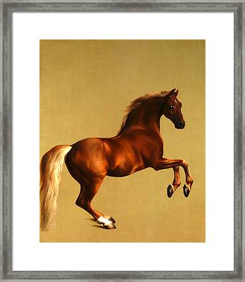 The Horse Framed Print by George Stubbs