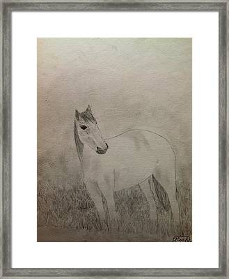 The Horse Framed Print by Noah Burdett