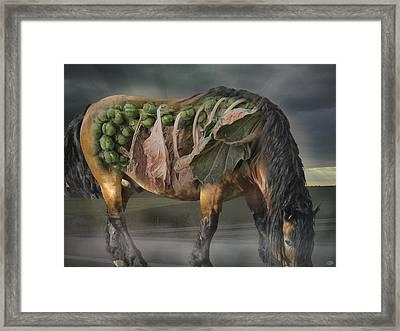 The Horse Of Mr. Roentgen Framed Print